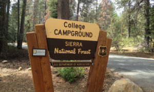 Sierra National Forest Campground Reservation Fee Increase.