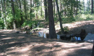 Flooding Closes Washington Campgrounds