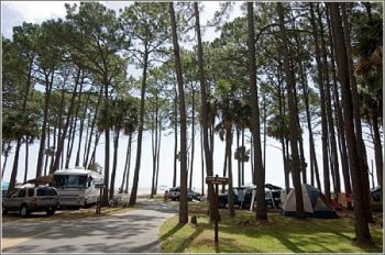 Campground at Hunting Island State Park Campground