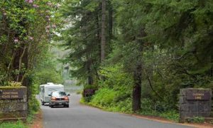Parking Fee Waived at Oregon State Parks For 'Green Friday'