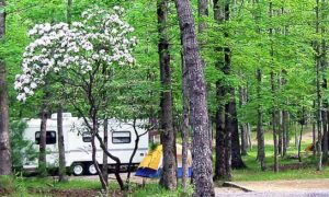 Great Smoky Mountains National Park Fee Increase
