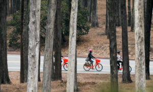 New National Parks e-Bike Policy Boosts Recreation & Accessibility