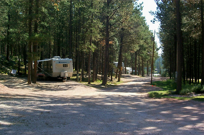 Washington National Forest Camp Hosts Needed Rv Tip Of